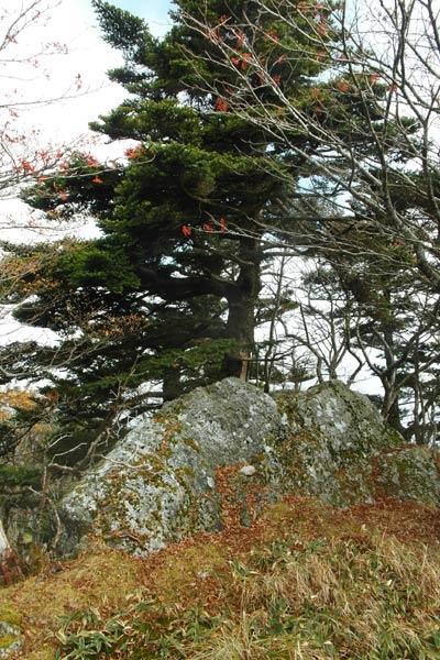 Mt. Sanjogatake 6