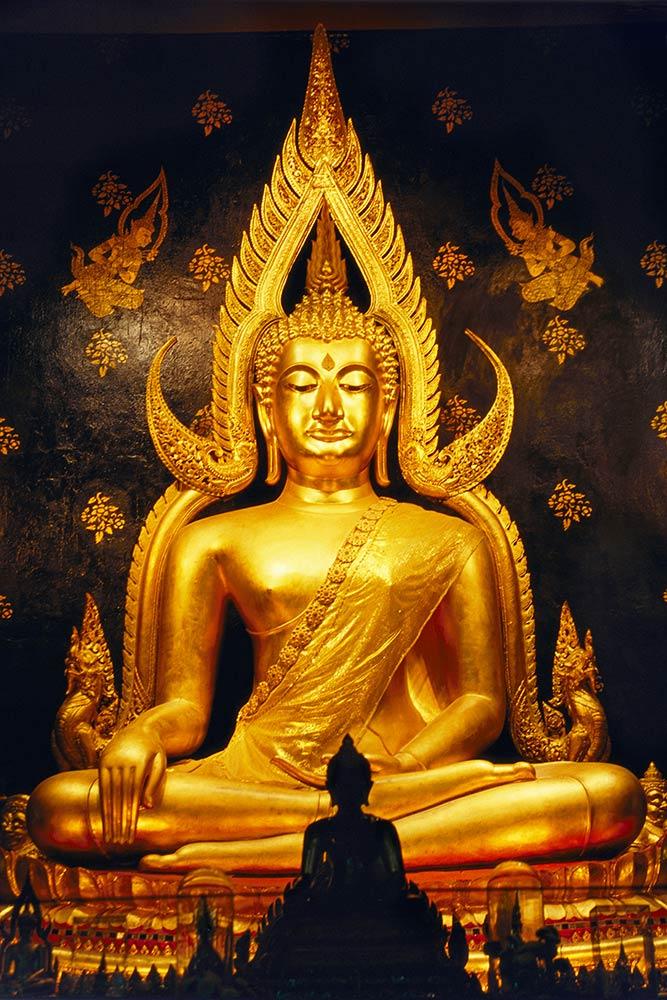 Buda dourado, Phitsamulok